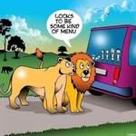 Lions Joke