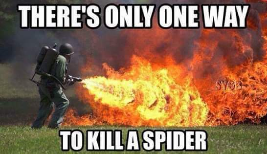 One Way To Kill A Spider